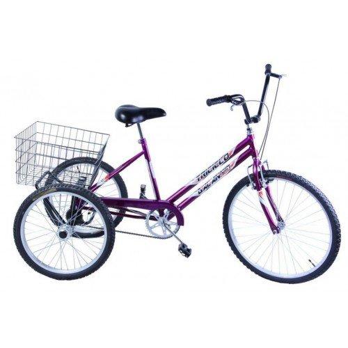 Bicicleta Aro 26 Dalannio Bike Triciclo Violeta